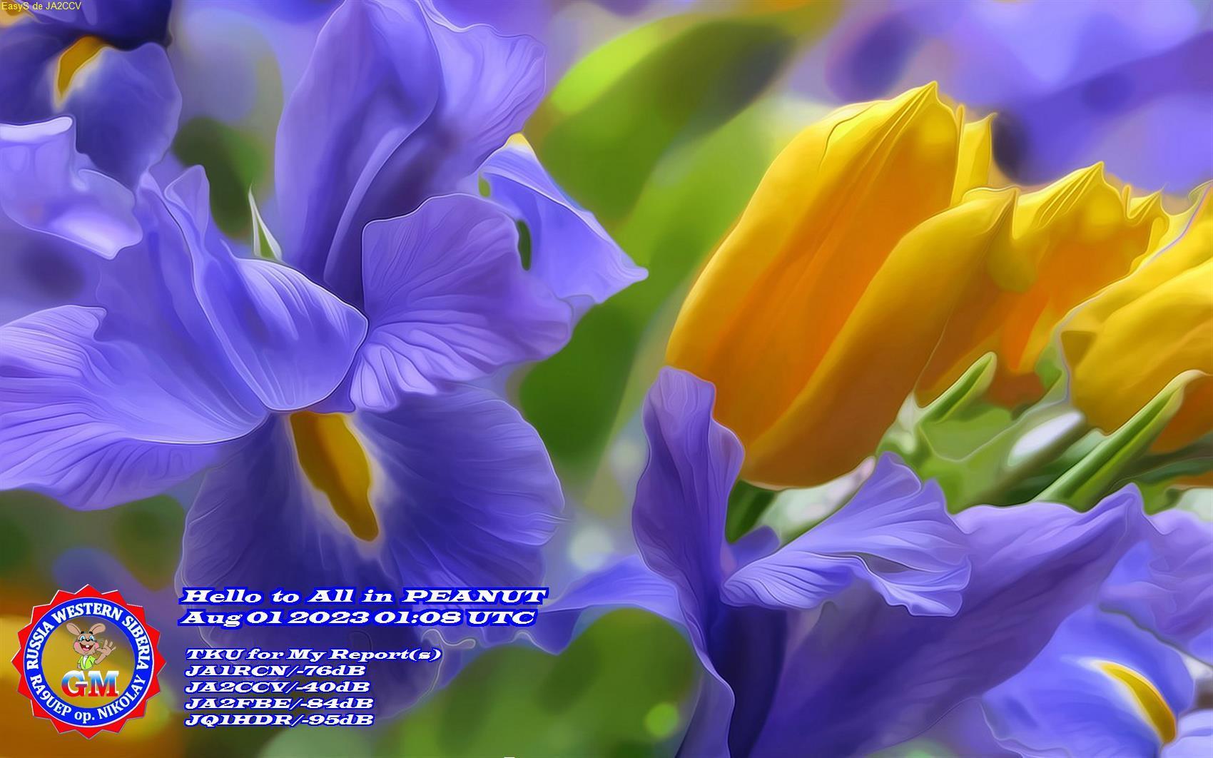 JA2CCV/